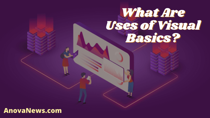 What Are Uses of Visual Basics?